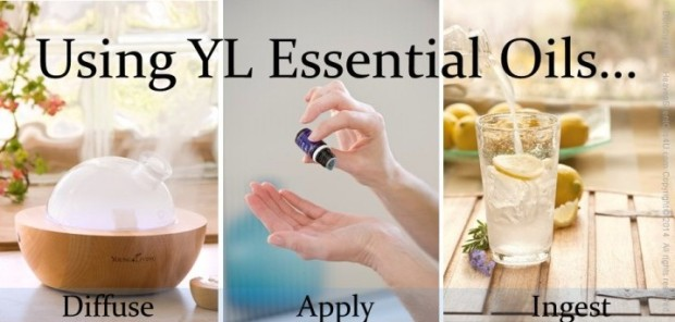 Using-YL-Essential-Oils-e1407744223882